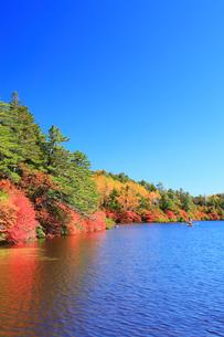 紅葉の白駒池とボートの写真素材 [FYI01516510]