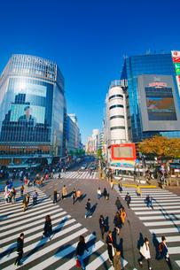 渋谷駅前スクランブル交差点を行き交う通行人の写真素材 [FYI01516532]