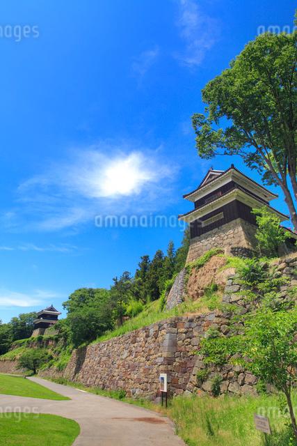 上田城の南櫓と西櫓の写真素材 [FYI01516626]