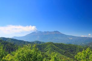 噴火する御嶽山と樹林の写真素材 [FYI01516645]