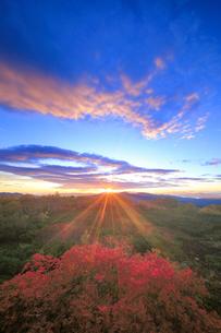 乗鞍岳位ヶ原の紅葉と八ケ岳方向の山並みと朝日の写真素材 [FYI01516727]