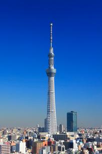 東京スカイツリーの写真素材 [FYI01516770]