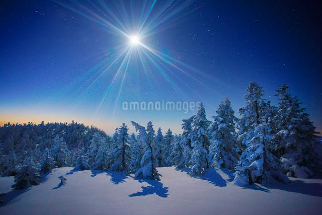月と黎明の横手山山頂の樹氷群の写真素材 [FYI01516811]