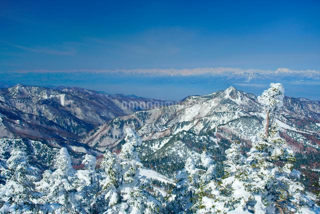 横手山の樹氷群と白馬岳など北アルプスの山並みの写真素材 [FYI01516880]