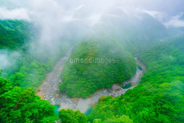 朝霧のひの字溪谷の写真素材 [FYI01516943]