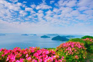 紫雲出山のツツジと粟島などの島々とうろこ雲と船の写真素材 [FYI01516965]