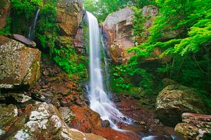 銚子溪の銚子の滝の写真素材 [FYI01517027]