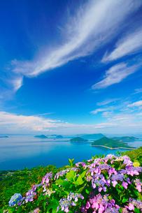 紫雲出山のアジサイと粟島などの島々の写真素材 [FYI01517046]