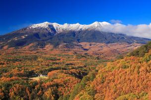 九蔵峠から望む紅葉の御嶽山の写真素材 [FYI01517167]