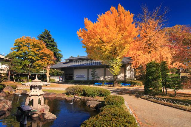 上田市立博物館と紅葉のイチョウと日本庭園の写真素材 [FYI01517316]