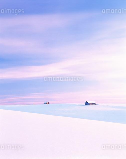 雪原の小屋の写真素材 [FYI01517376]