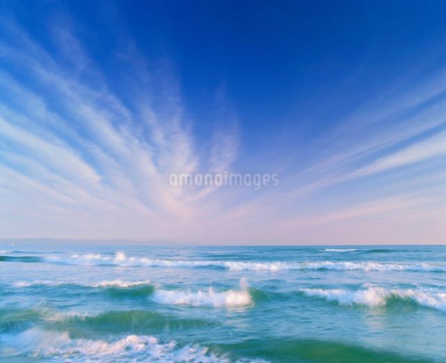 朝の海の写真素材 [FYI01517544]
