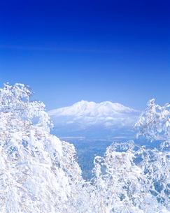 樹氷と斜里岳の写真素材 [FYI01517651]