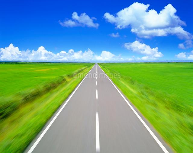 道路走行の写真素材 [FYI01517661]