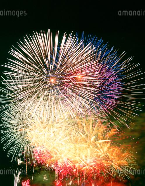 花火の写真素材 [FYI01517676]