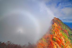 紅葉の天狗岳とダブル霧虹とブロッケン現象の写真素材 [FYI01517854]
