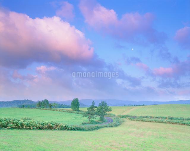 牧草地と道路と月の写真素材 [FYI01517962]