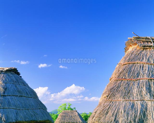 芽ぶき屋根の写真素材 [FYI01518000]