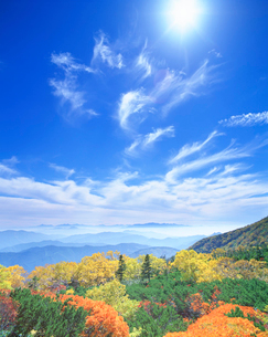 秋の樹林と甲斐駒ケ岳方向の山並の写真素材 [FYI01518220]