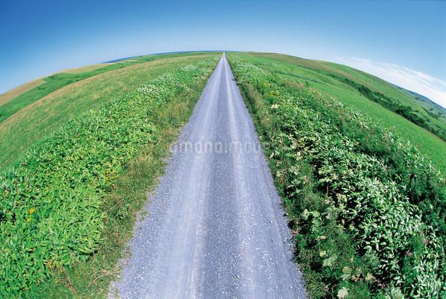 道の写真素材 [FYI01518309]