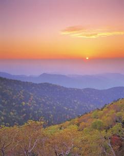 紅葉した樹木と山並みの写真素材 [FYI01518513]