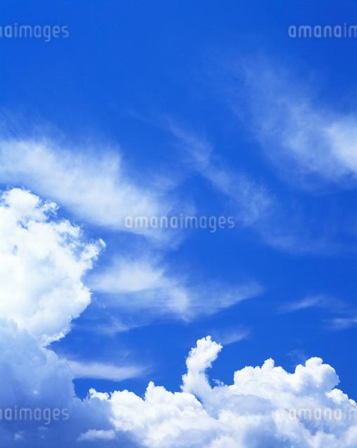 雲の写真素材 [FYI01518601]
