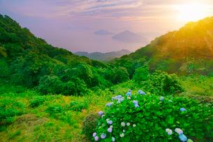 紫雲出山のアジサイと粟島などの島々と朝日の写真素材 [FYI01518709]
