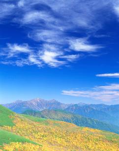 秋の樹林と穂高・槍ヶ岳の写真素材 [FYI01518760]