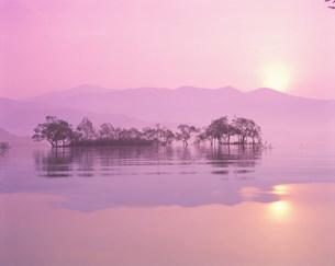 朝の湖の写真素材 [FYI01518855]