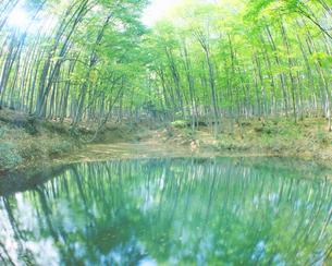 幕滝と虹の写真素材 [FYI01518916]