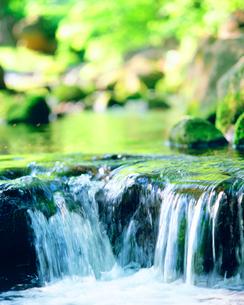 清流・熊原川の写真素材 [FYI01519070]