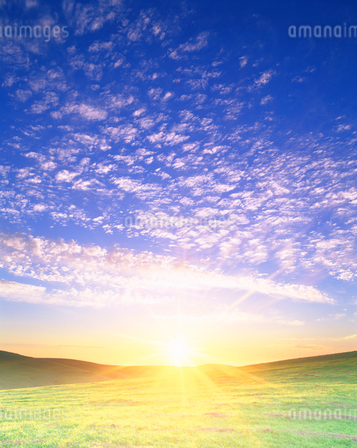 牧草地と朝日の写真素材 [FYI01519078]