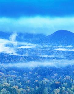 雲湧く樹林・朝の写真素材 [FYI01519504]