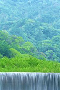 新緑と滝の写真素材 [FYI01519567]