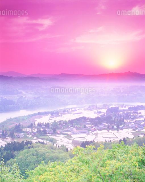 水田地帯と朝日と信濃川の写真素材 [FYI01519580]