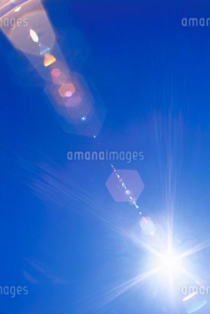 太陽とレンズ効果の写真素材 [FYI01520117]