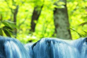 ニの滝の脇の清流の写真素材 [FYI01520464]