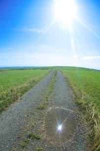 牧草地と道と水たまりと太陽の写真素材 [FYI01521081]