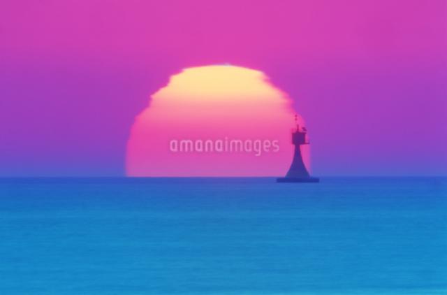 カモメと朝日の写真素材 [FYI01521170]