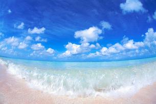 トロピカル色の波と波しぶきの写真素材 [FYI01521551]