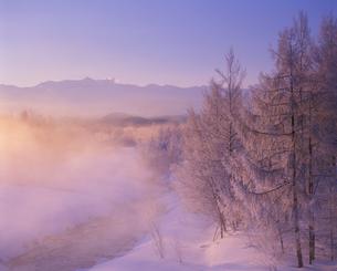 霧氷林と美瑛川と十勝連邦 朝の写真素材 [FYI01521787]