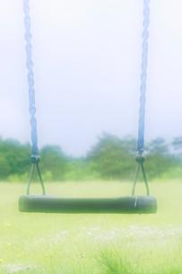 ブランコの椅子と草原の写真素材 [FYI01521789]