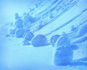 転がった雪の玉の写真素材 [FYI01521866]