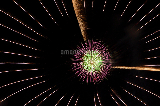 花火の写真素材 [FYI01521984]