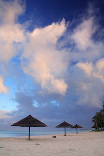 朝のビーチと日除けの写真素材 [FYI01522170]