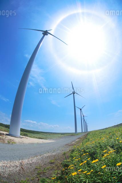 風力発電の風車と太陽の写真素材 [FYI01522285]