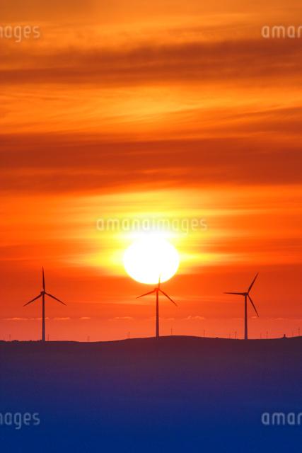 風力発電の風車と朝日の写真素材 [FYI01522709]