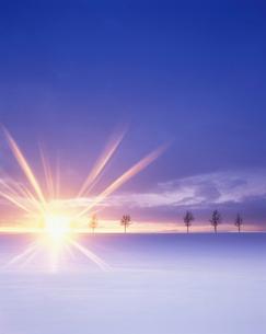 メルヘンの丘と朝日の写真素材 [FYI01522986]
