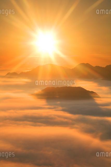 雲海と朝日 女神岳方向の写真素材 [FYI01523786]