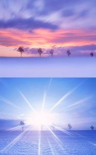メルヘンの丘と朝焼けと朝日の写真素材 [FYI01524017]